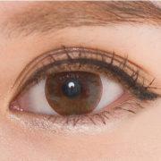 2주착용앤브라운_eye